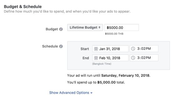 Budget & Schedule